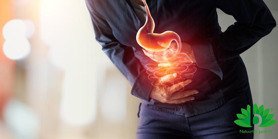 Bacterie als grootste boosdoener bij maagzweer_2021_02