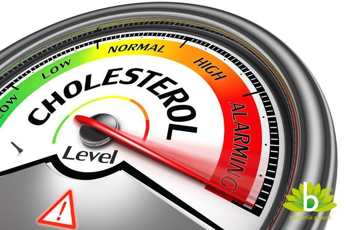 cholesterol_675x900