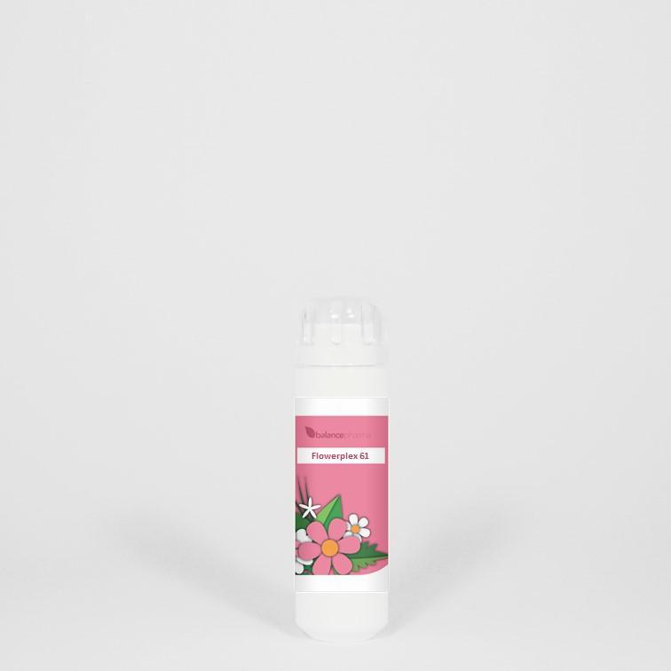 HFP061 Vergevingsgezindheid Flowerplex