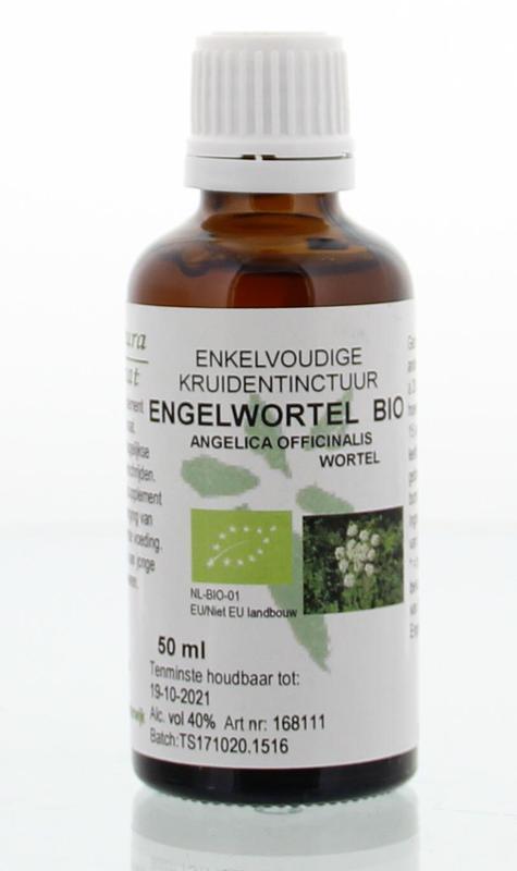 Angelica officinalis / engelwortel tinctuur bio