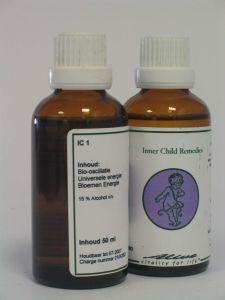 IC 1 Zwangerschap