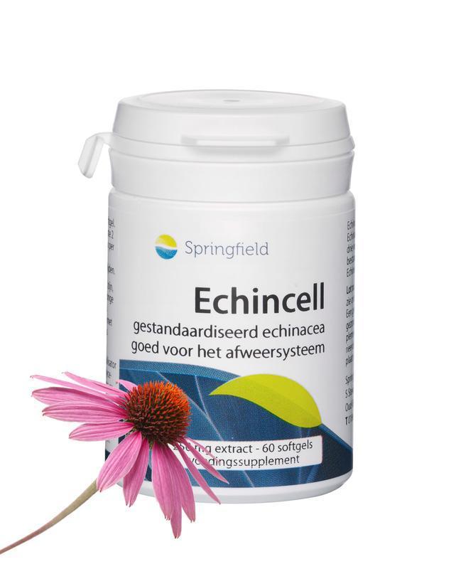 Echincell